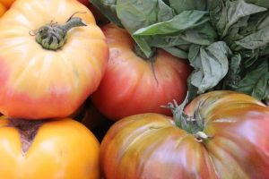 heirloom beefsteak tomatoes
