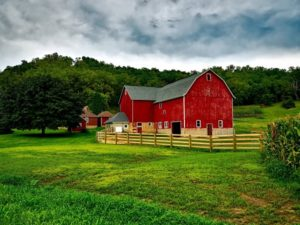What Corporations Don't Like About Smaller Family Farms