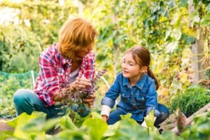 How You Can Support Family Farms